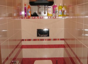 Туалетная комната отделанная плиткой