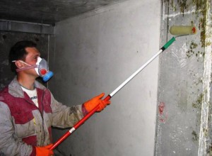 Обработка стен антигрибковым грунтом, stroy.kn.kz