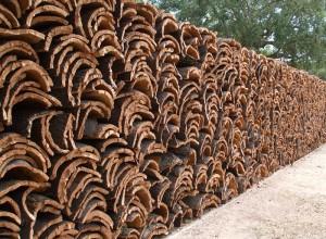 Фотография заготовленной коры пробкового дуба, cork.su