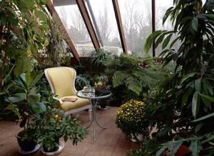 Изображение умеренного зимнего сада, shodny.ru
