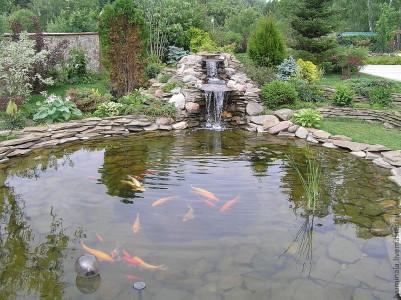 Фотография пруда с каменной кладкой и рыбой