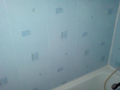 Фотография установленных пластиковых панелей
