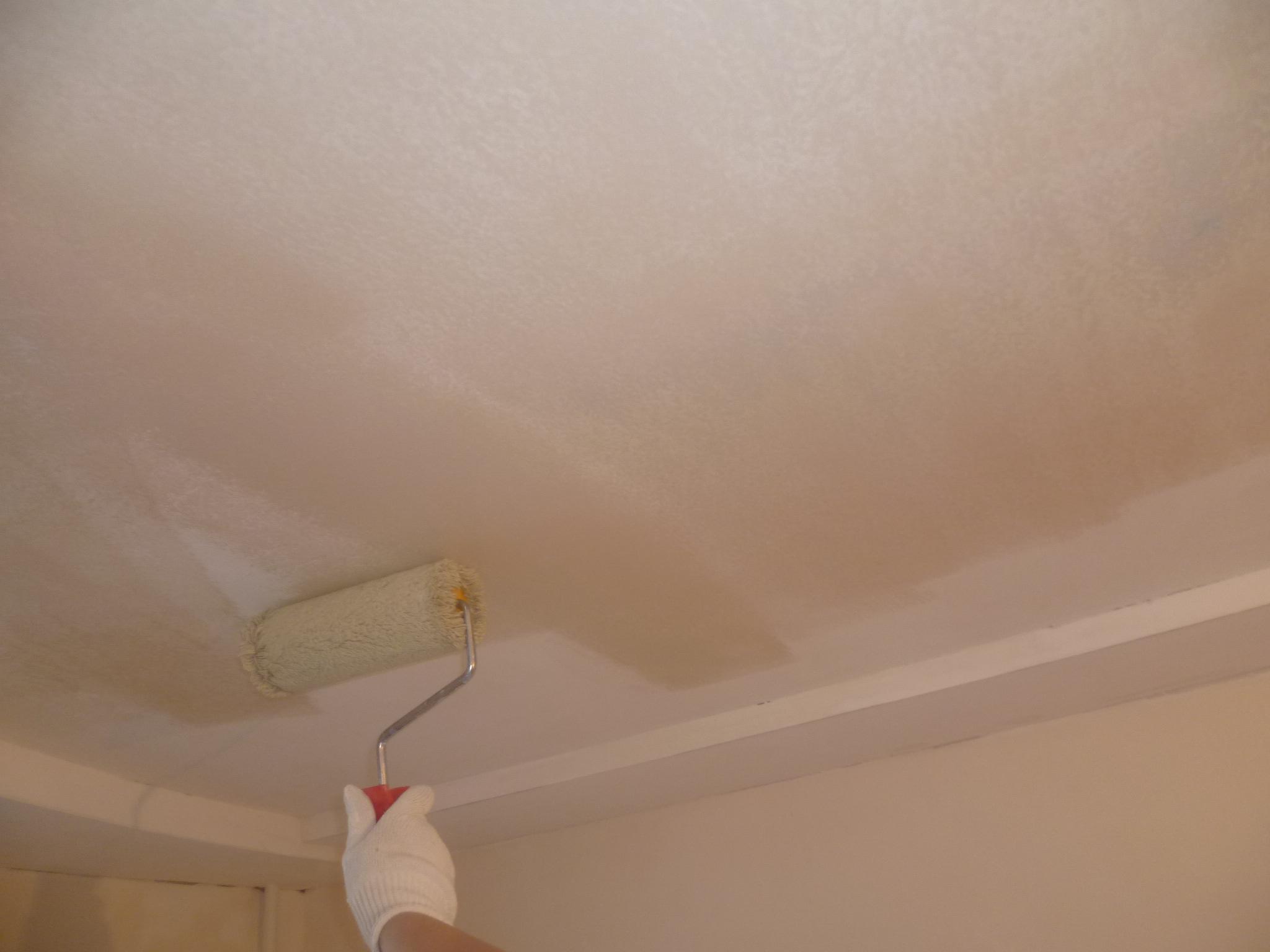 Грунтовка потолка перед покраской водоэмульсионной краской