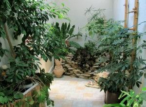 Зимний сад в доме — от идеи до реализации