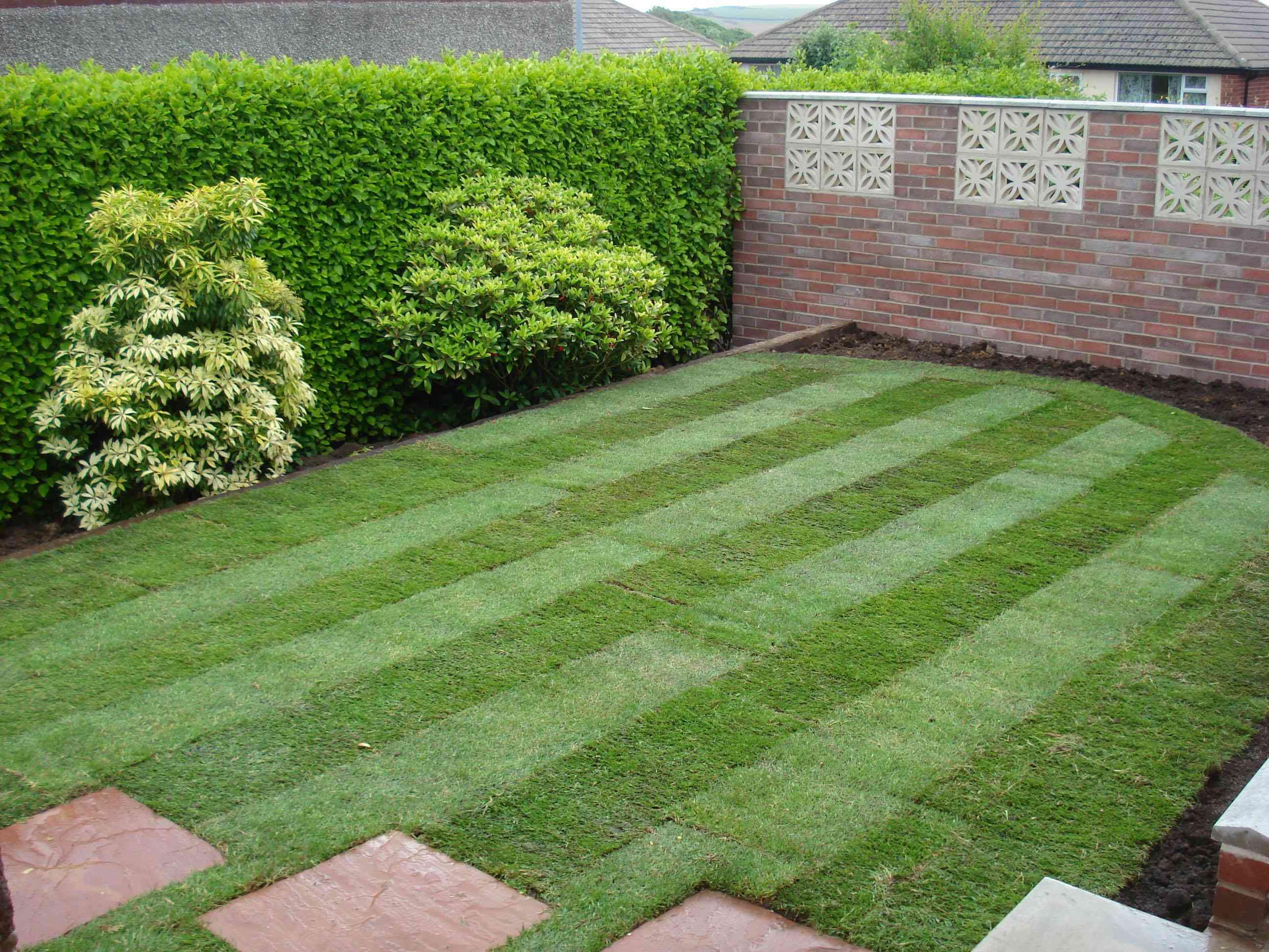 Как сделать каток для газона из подручных материалов