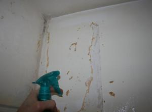 Фото процесса удаления старой краски, smivka.ru