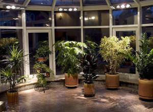 На фотографии освещение в зимнем саду, nestortech.ru