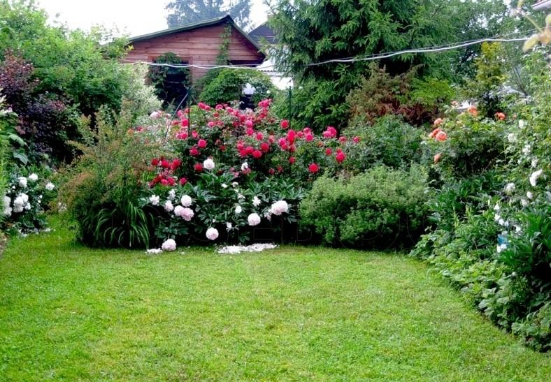 Дизайн сада своими руками: фото и интересные идеи 10
