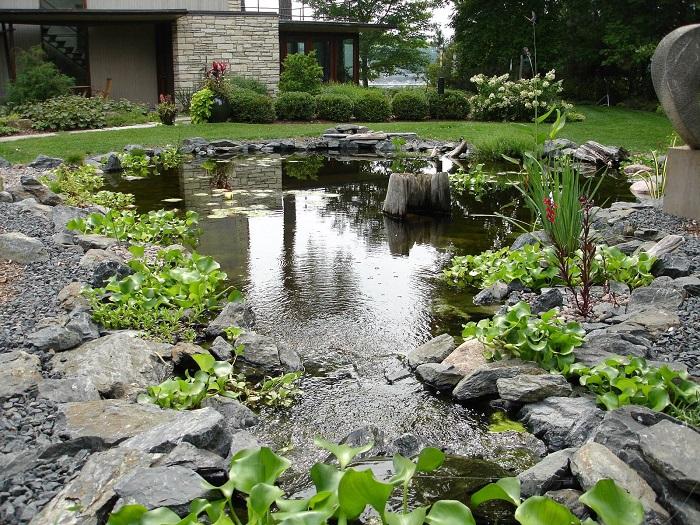 Фото садового пруда