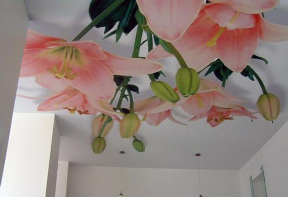 На фото 3д потолок